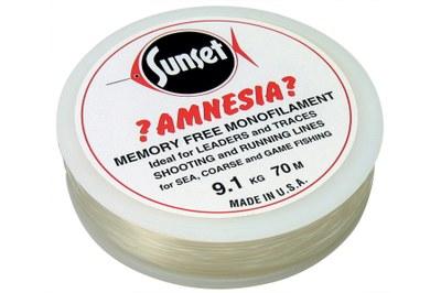 Amnesia Leader Clear