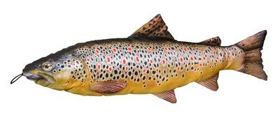 Fladen Cuddly Fish Cushion Brown Trout 65cm