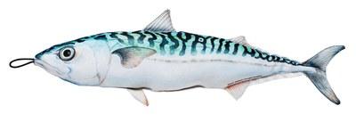 Fladen Cuddly Fish Cushion Mackerel 40cm