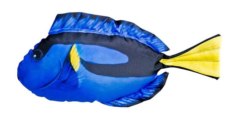 Gaby Mini Blue Tang (Dory) Cushion