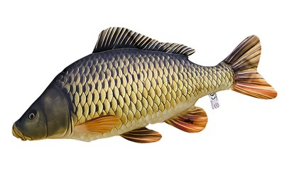 Gaby Common Carp Mini Pillow 36cm