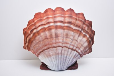 Gaby Scallop Orange 45cm
